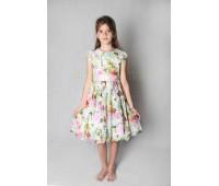 Платье (882)