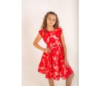Платье  (905)
