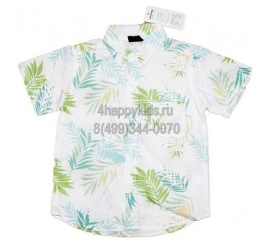 Рубашка для мальчика (3489)